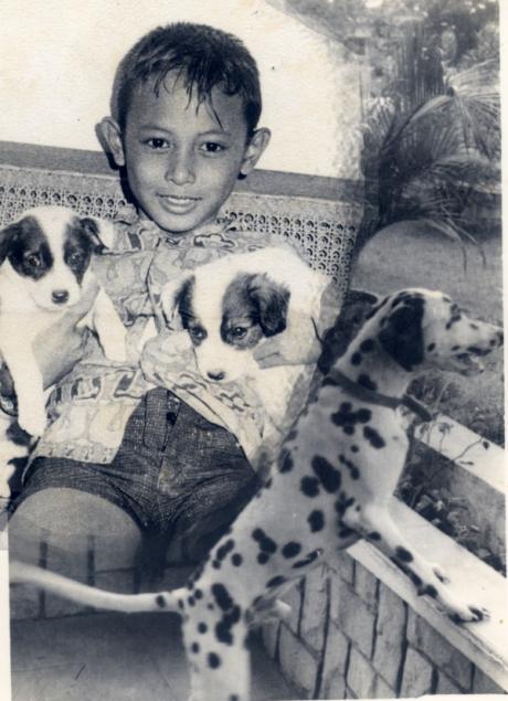 Me Melko Doggy